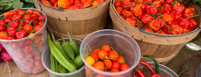 Tomball Farmers Market is one of Places To Visit In Houston.