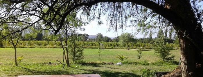 Piscina Camping Los Algarrobos is one of Luis: сохраненные места.