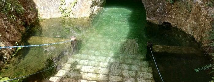 Cenotes Santa Barbara is one of Para recomendar.