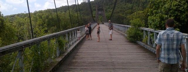 Pont suspendu de la Rivière de l'Est is one of À visiter à #LaRéunion (974).