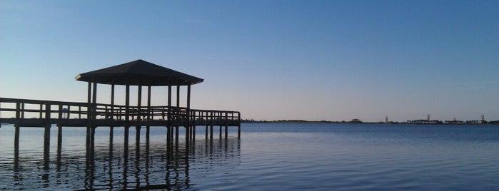 Gulf State Park is one of สถานที่ที่ Mark ถูกใจ.