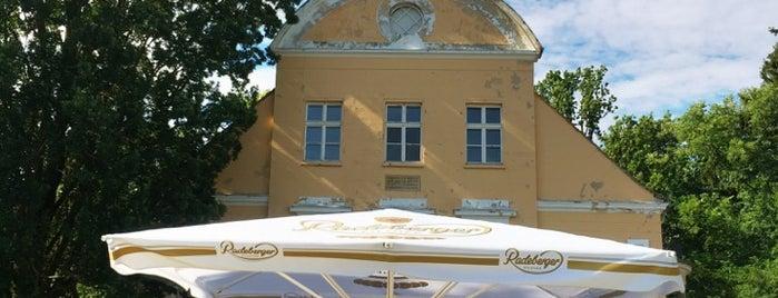 Café Luise is one of Karina 님이 저장한 장소.