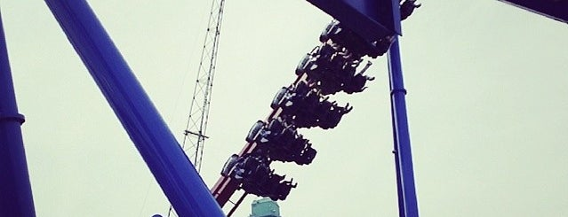 Gold Standards Among Roller Coasters