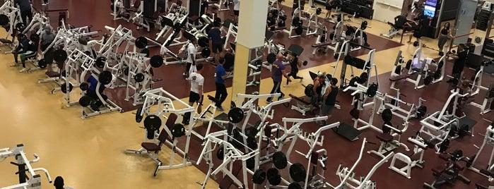 Las Vegas Athletic Club - Northwest is one of Lieux qui ont plu à Destiny.