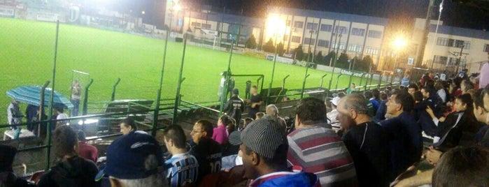 Estádio da Zona Sul is one of Aqui na terra tão jogando futebol.