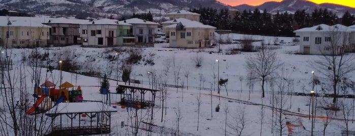 Taçyaprak Parkı is one of Sapanca.