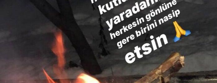 Başpınar Yeleme is one of Lugares favoritos de R. Gizem.