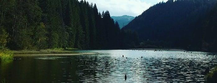 Lacul Roșu is one of Posti che sono piaciuti a Alex.