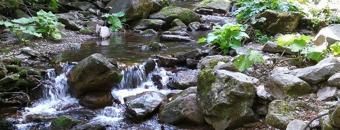 Каньонът на водопадите is one of Posti che sono piaciuti a Alex.