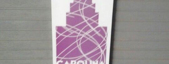 Carolina Ice Palace is one of Orte, die Jill gefallen.