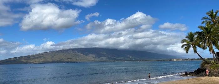 Kalepolepo Park is one of Maui.