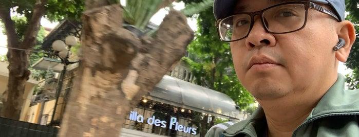 Villa Des Fleurs 48 Trần Phú is one of Hanoi.