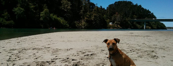 Big River Beach is one of Mendocino.