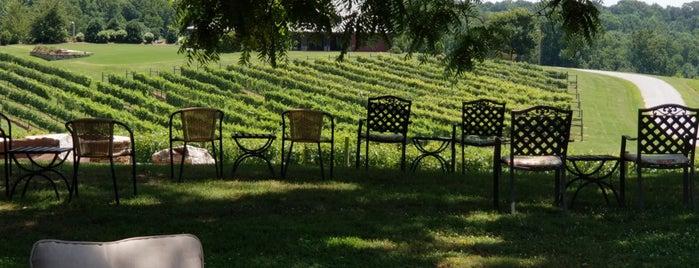 CeNita Vineyards is one of Orte, die Super gefallen.