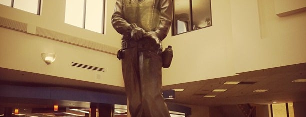 Sioux Falls Regional Airport (FSD) is one of Airports been to.