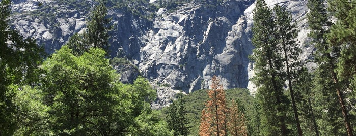 Yosemite National Park is one of Go Ahead, Be A Tourist.