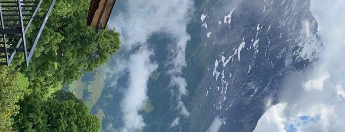Grindelwald is one of Bucket list.