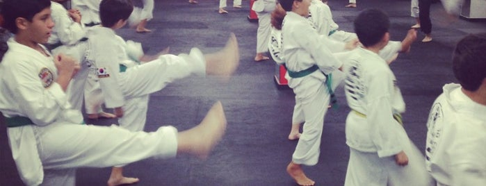 American Taekwondo Center - Club Médico Deportivo is one of สถานที่ที่ Monica ถูกใจ.