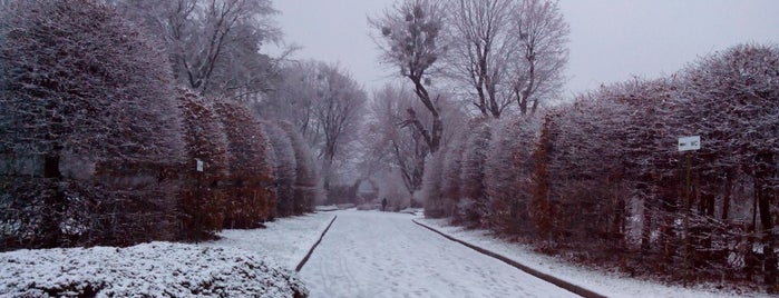 Національний ботанічний сад ім. М. М. Гришка / Gryshko National Botanic Garden is one of Beauty.