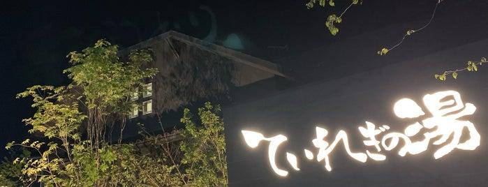 南道後温泉 ていれぎの湯 is one of 訪れた温泉施設.