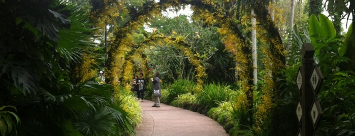 National Orchid Garden is one of Singapore.