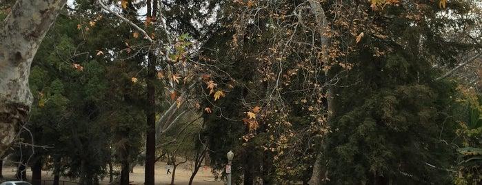 Greater Griffith Park is one of Posti che sono piaciuti a Alberto J S.
