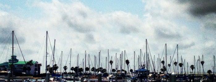 Corpus Christi Marina is one of Rowdy 님이 좋아한 장소.