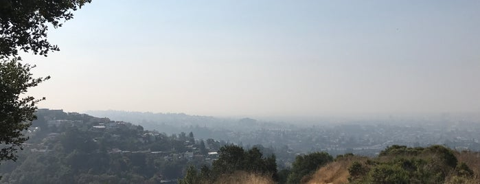 Bay Area City Hikes
