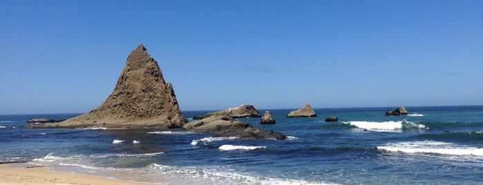 Martin's Beach is one of San Francisco.