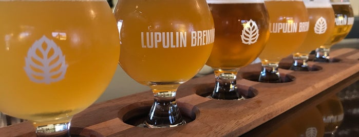 Lupulin Brewing is one of #ministerapproved.