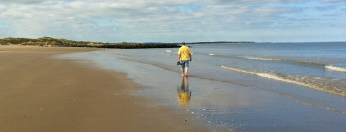 Rosslare Strand is one of Mark's list of Ireland.