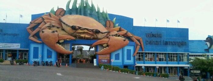 Wisata Bahari Lamongan (WBL) is one of Surabaya.