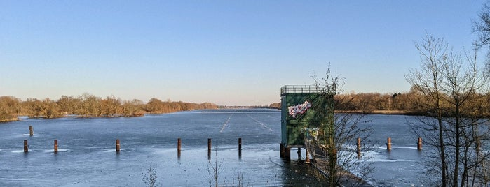 Dove Elbe is one of Hamburg.