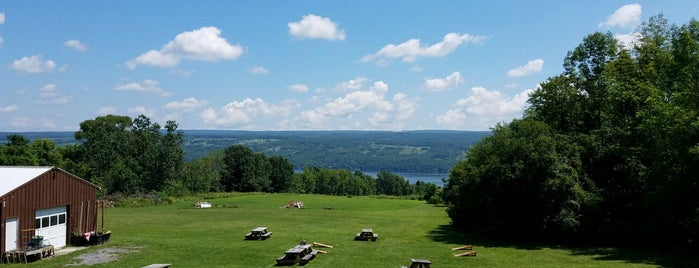 Seneca Lake Brewing Co. Tap Room is one of Finger Lakes Wine Trail & Some.