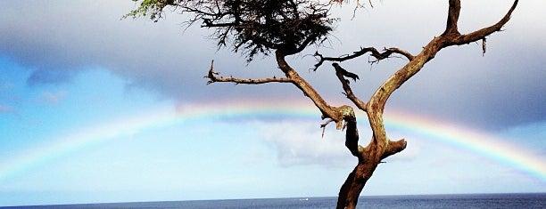 Mahukona State Park is one of Big Island with JetSetCD.