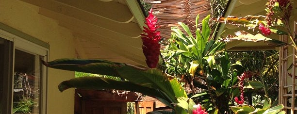 Puako Bed & Breakfast is one of Hawaii.
