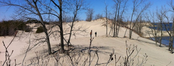Sandbanks Provincial Park: Dunes is one of NYC-Toronto Road Trip.