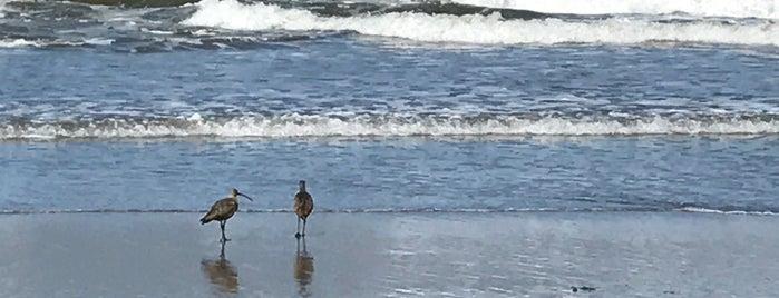 Jalama Beach County Park is one of Matei'nin Beğendiği Mekanlar.