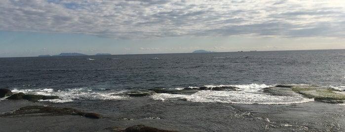 恵比須島 is one of Lieux qui ont plu à Masahiro.