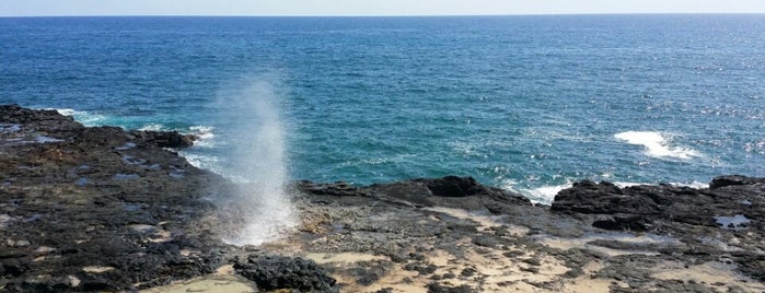 Spouting Horn State Park is one of Tempat yang Disukai Michelle.