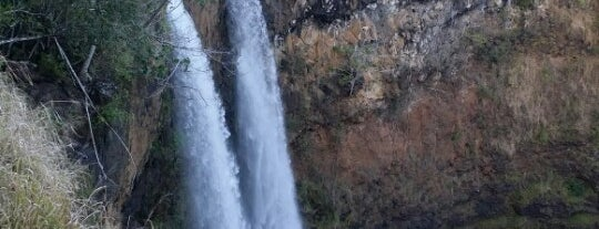 Wailua Falls is one of Michelleさんのお気に入りスポット.