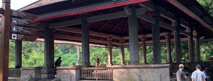 Pura Dalem Monkey Forest is one of Enjoy Bali Ubud.