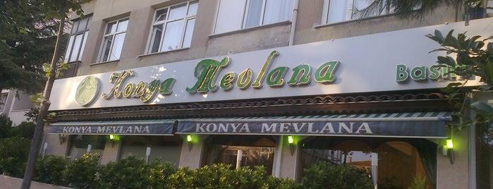 Konya Mevlana Restaurant is one of Haznedar.