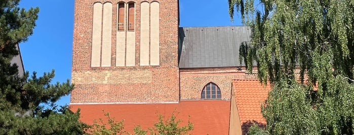 St. Petri Kirche is one of Wolgast🇩🇪.
