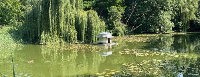 Lindengarten is one of Wismar🇩🇪.