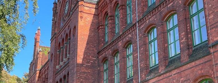 Gerhart-Hauptmann-Schule is one of Stralsund🇩🇪.