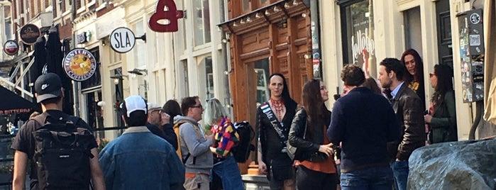 Lellebel is one of Amsterdam  gay.