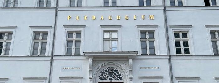 Paedagogium is one of Putbus🇩🇪.