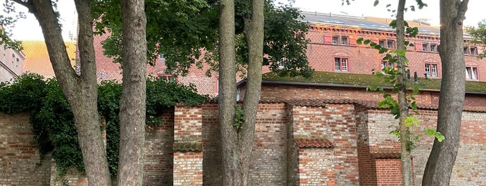 Stadtmauer is one of Stralsund🇩🇪.