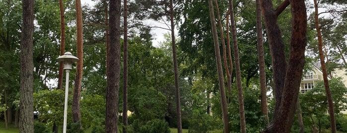 Kurpark is one of Oostzeekust 🇩🇪.
